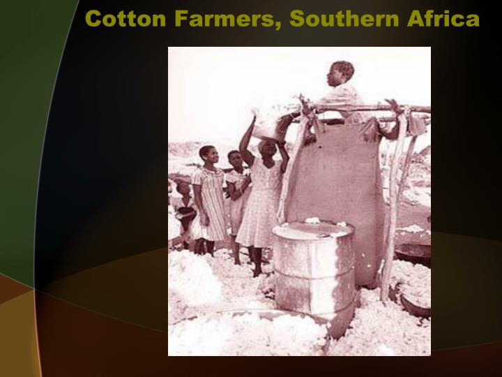 Cotton Farmers, Southern Africa