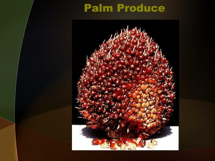 Palm Produce