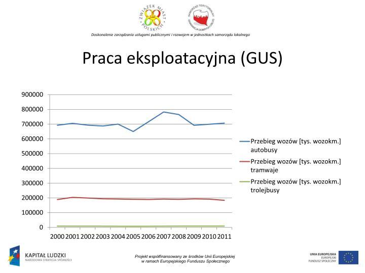 Praca eksploatacyjna (GUS)