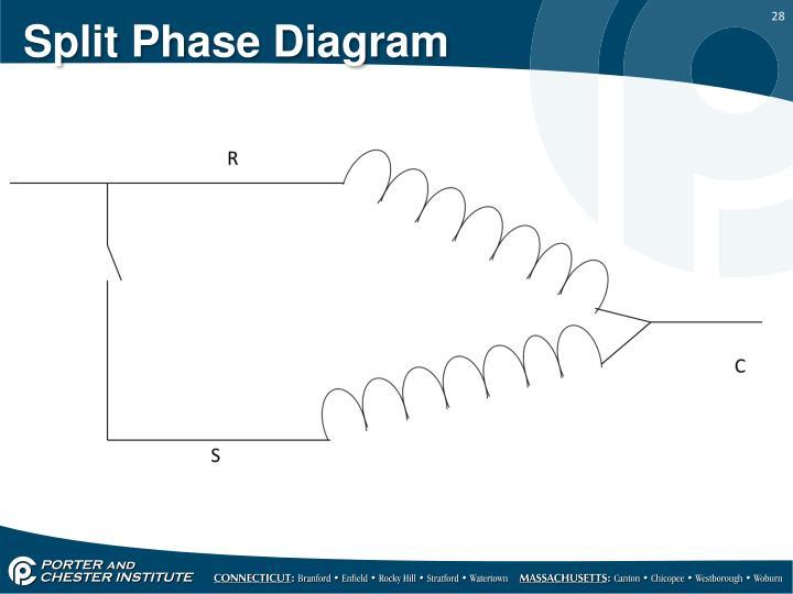 Split Phase Diagram