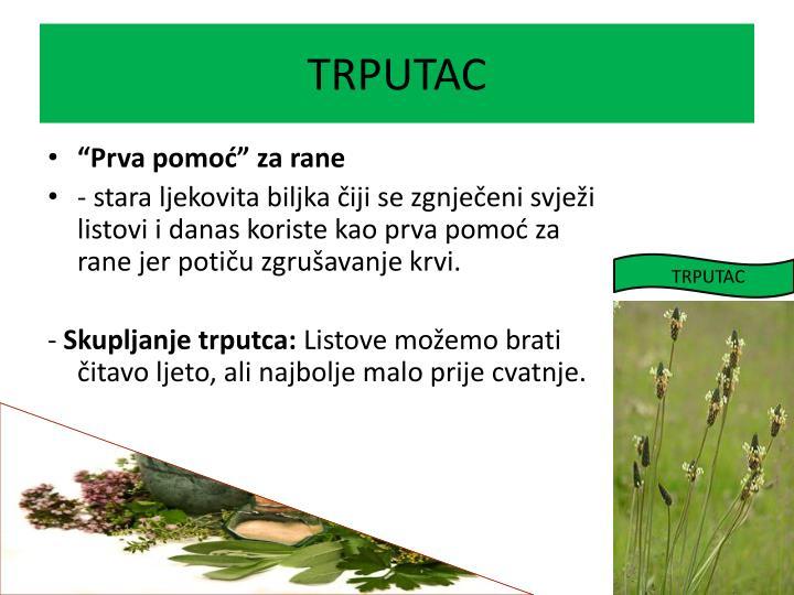 TRPUTAC