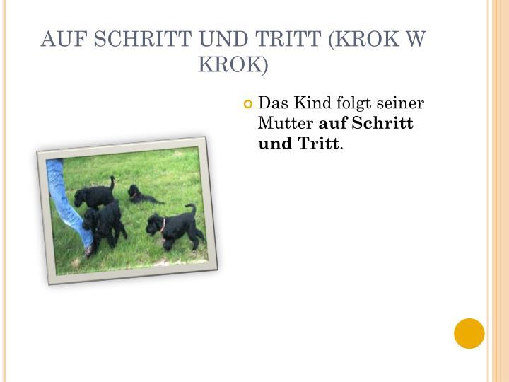 AUF SCHRITT UND TRITT (KROK W KROK)
