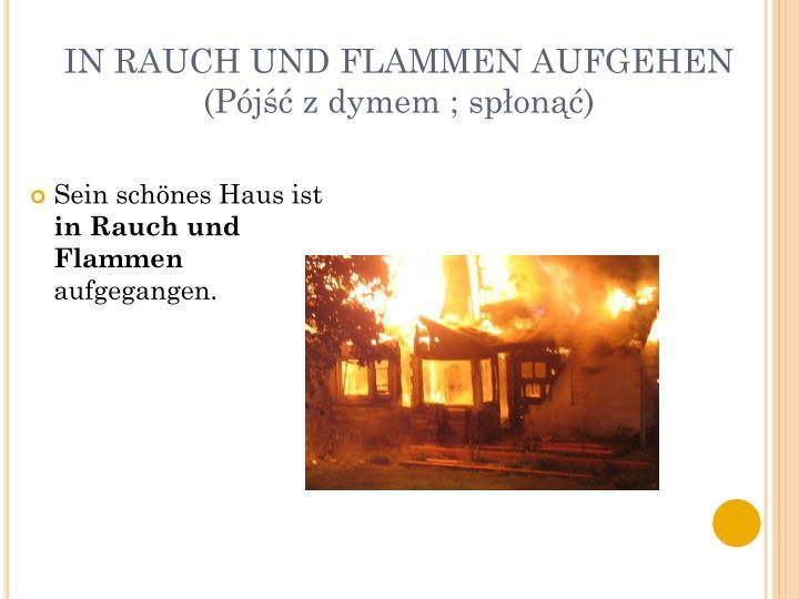 IN RAUCH UND FLAMMEN AUFGEHEN (Pójść z dymem ; spłonąć)