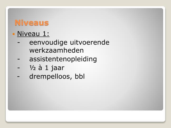 Niveau 1: