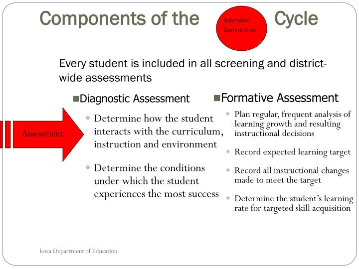 Determine how the student interacts with the curriculum,  instruction and environment