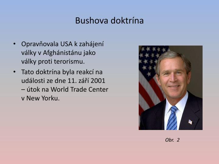 Bushova doktrína