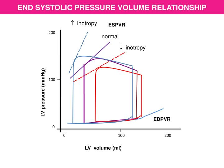 END SYSTOLIC PRESSURE VOLUME RELATIONSHIP