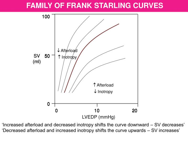 FAMILY OF FRANK STARLING CURVES