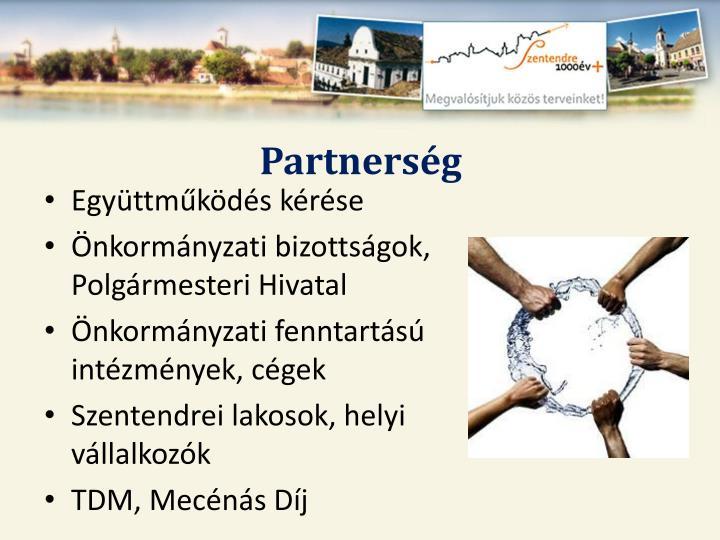 Partnerség
