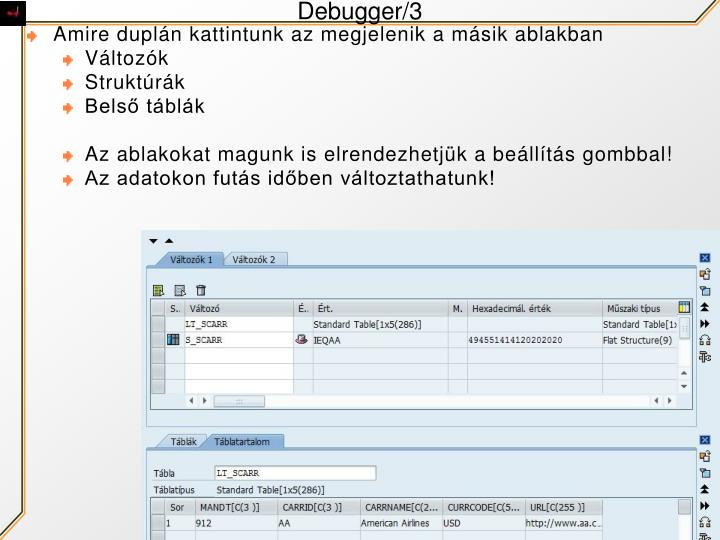 Debugger/3