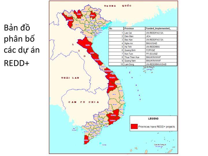 Bản đồ phân bố các dự án