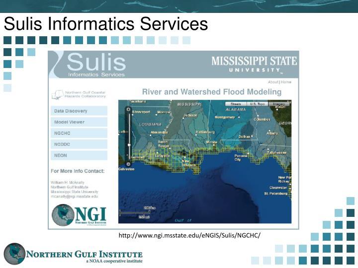 Sulis Informatics Services