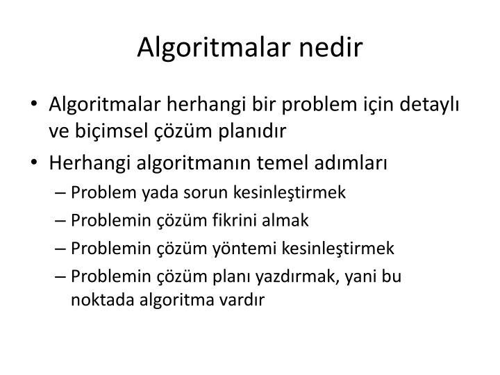 Algoritmalar nedir