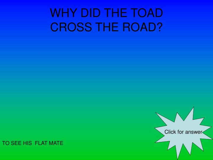 Why did the toad cross the road