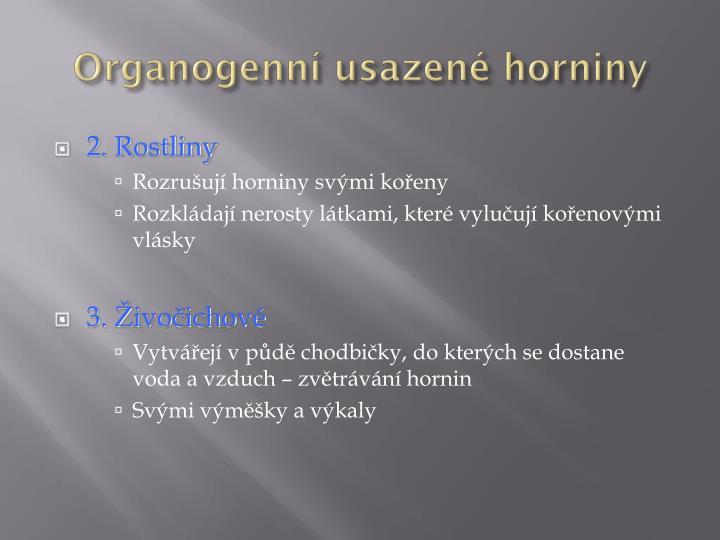 Organogenní usazené horniny