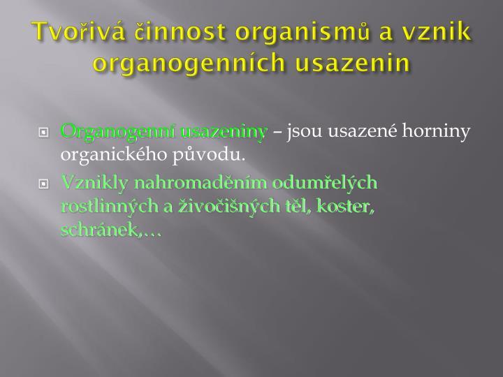 Tvořivá činnost organismů a vznik organogenních usazenin