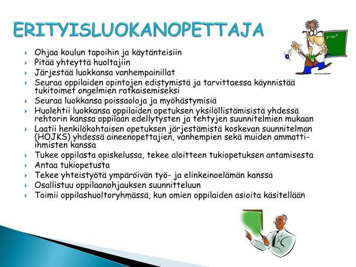 ERITYISLUOKANOPETTAJA