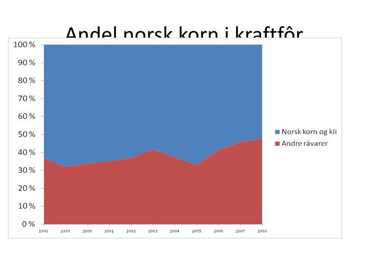 norske jenter sex norsk cam sex