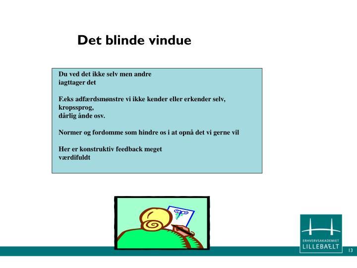 Det blinde vindue
