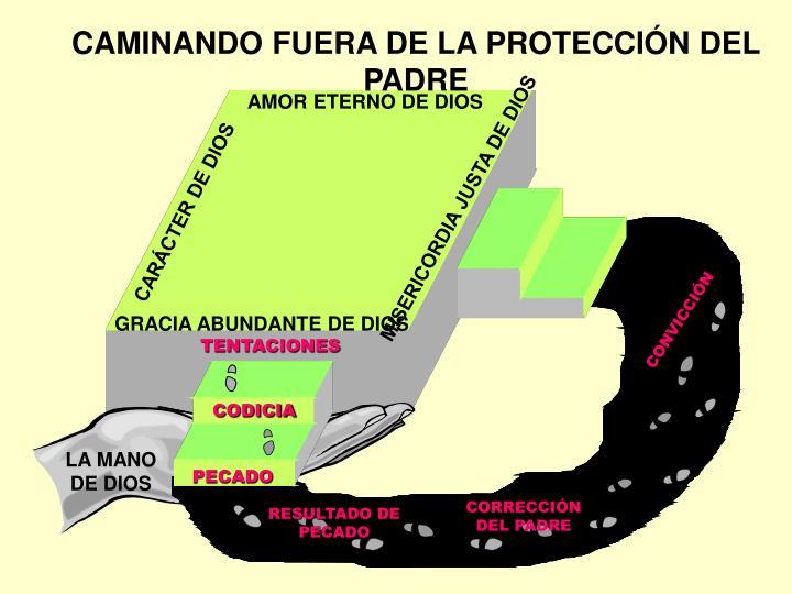CAMINANDO FUERA DE LA PROTECCI