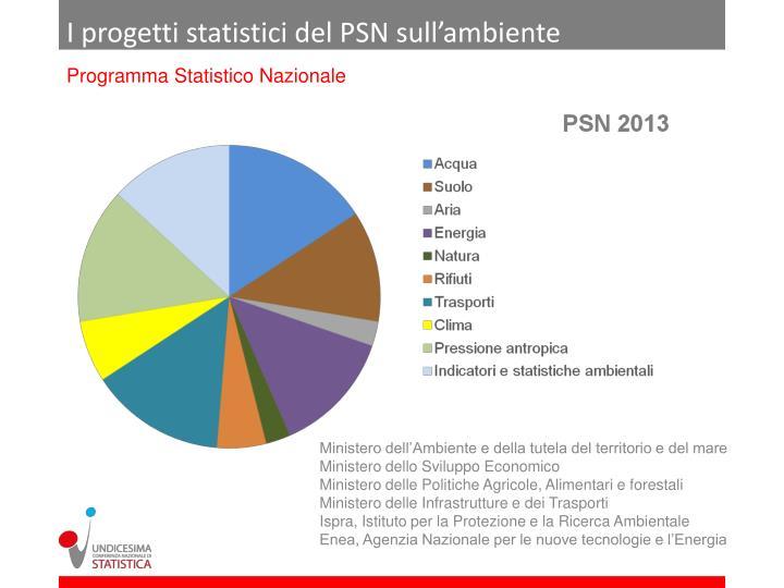 I progetti statistici del PSN sull'ambiente