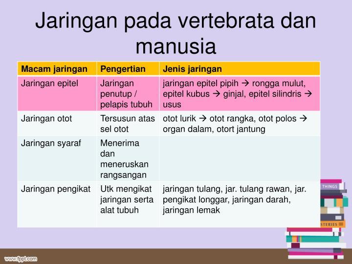 Jaringan pada vertebrata dan manusia