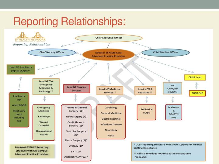 Reporting Relationships: