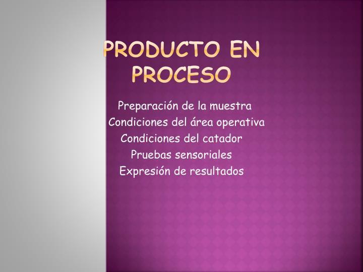 Producto en proceso