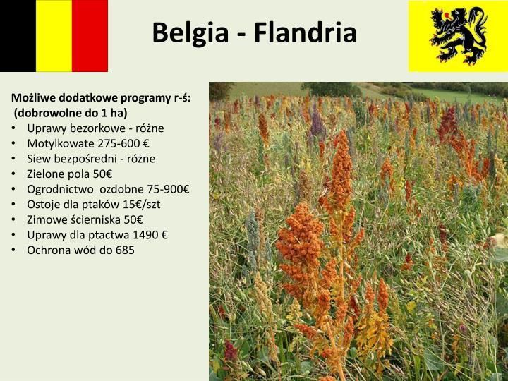Belgia - Flandria