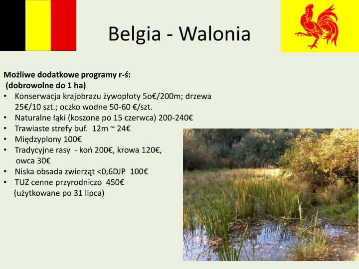 Belgia - Walonia
