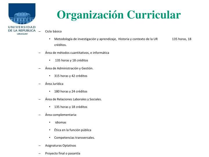 Organizacin Curricular