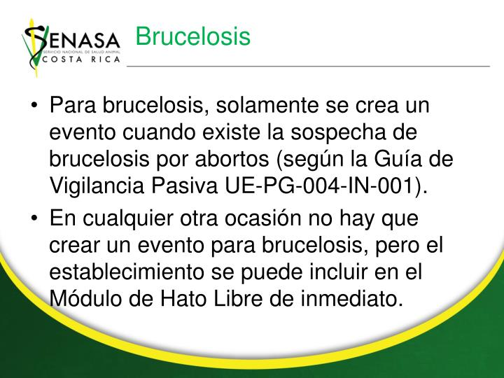 Brucelosis