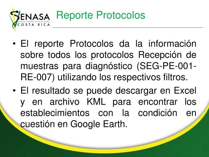 Reporte Protocolos