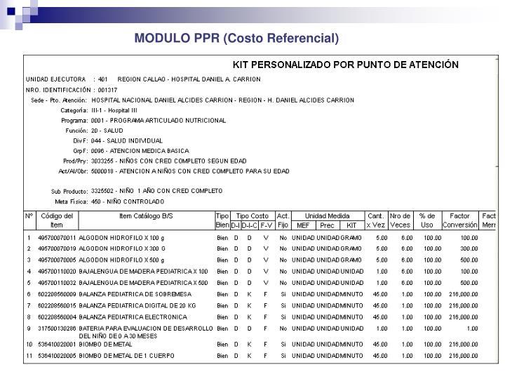 MODULO PPR (
