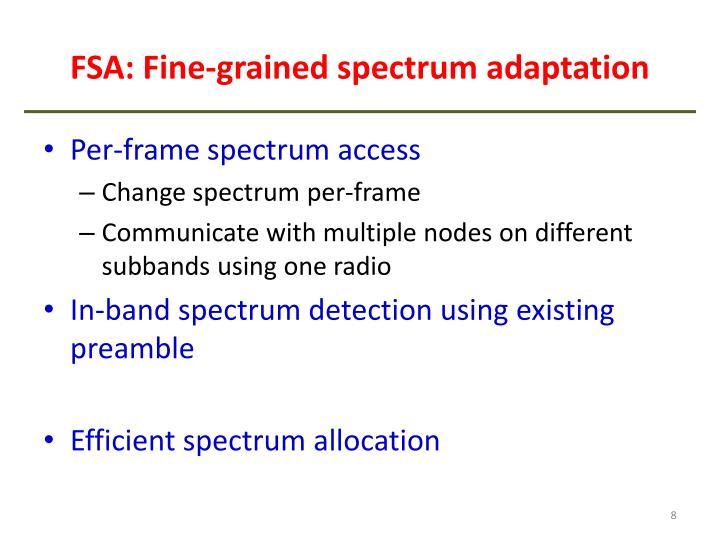 FSA: Fine-grained