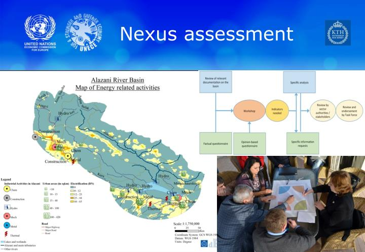 Nexus assessment