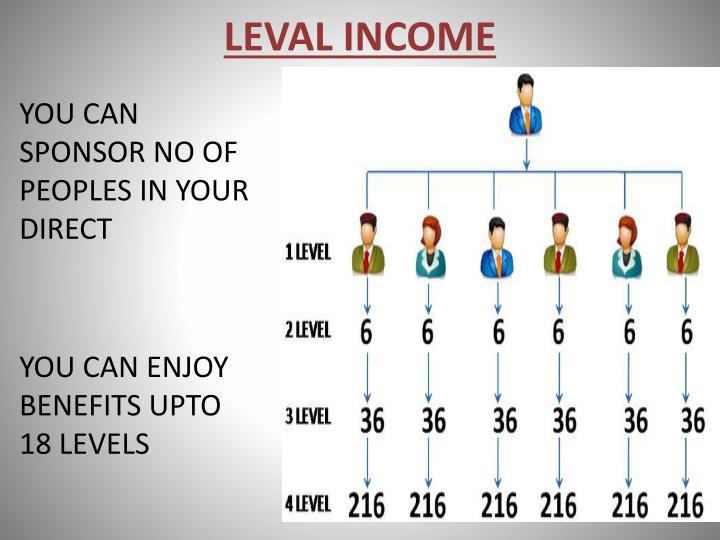 LEVAL INCOME