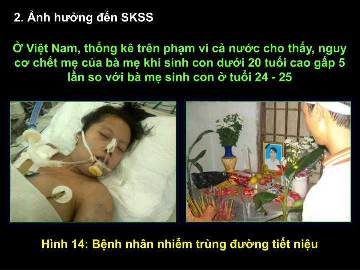 2. Ảnh hưởng đến SKSS
