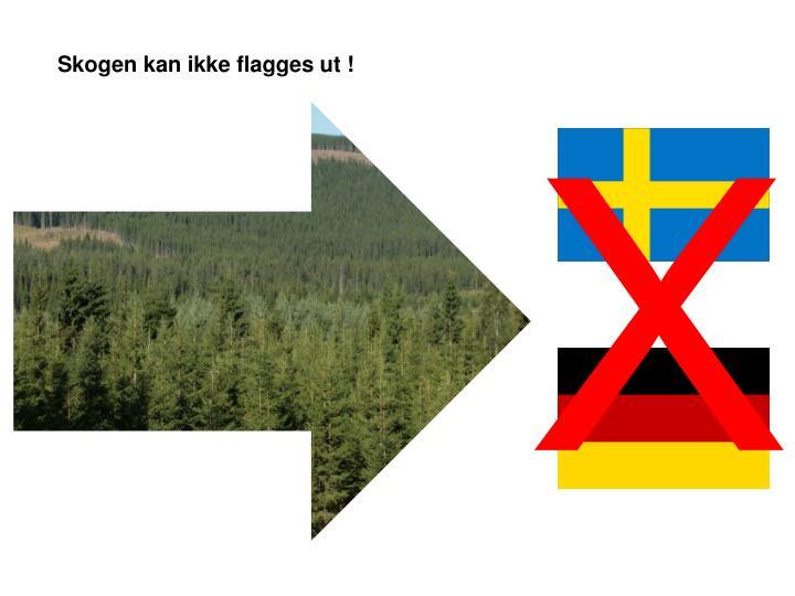 Skogen kan ikke flagges