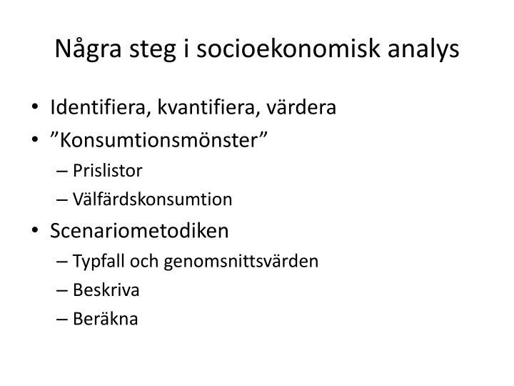 Några steg i socioekonomisk analys