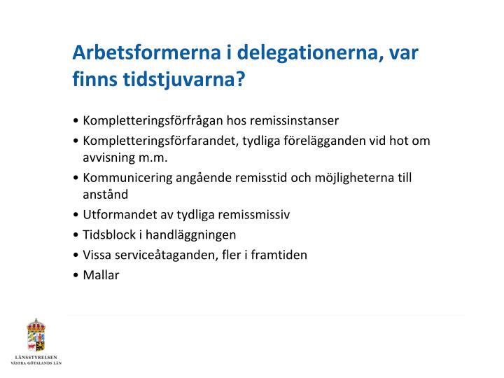 Arbetsformerna i delegationerna, var finns tidstjuvarna?