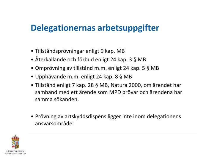 Delegationernas arbetsuppgifter