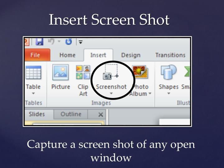 Insert Screen Shot