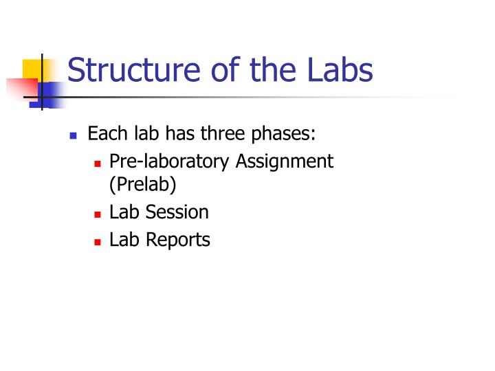 Structure of the Labs