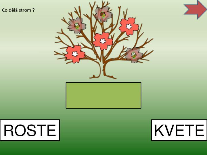 Co dělá strom ?