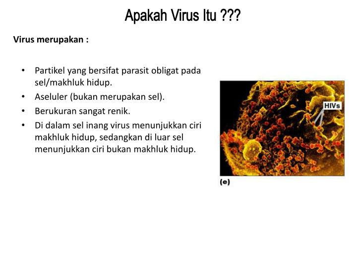 Apakah Virus Itu ???