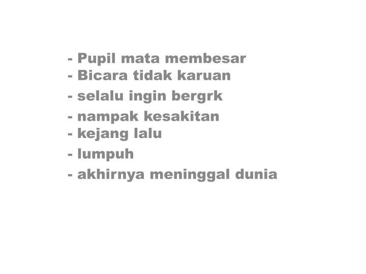 - Pupil