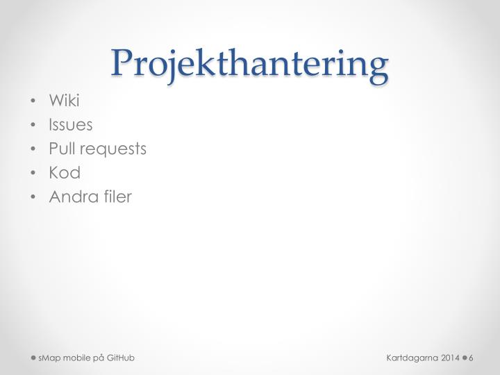 Projekthantering