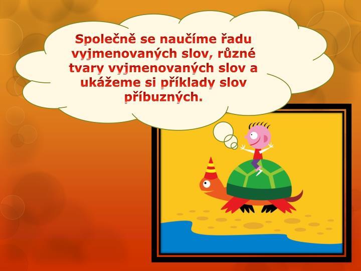 Společně se naučíme řadu vyjmenovaných slov, různé tvary vyjmenovaných slov a ukážeme si příklady slov příbuzných.