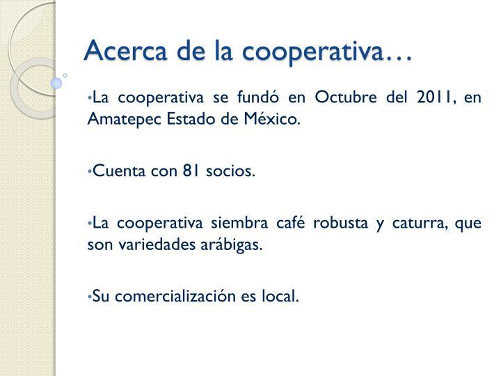 Acerca de la cooperativa…